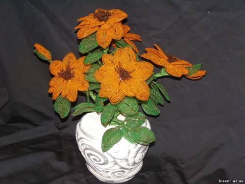 Головна галерея дерева та квіти квіти