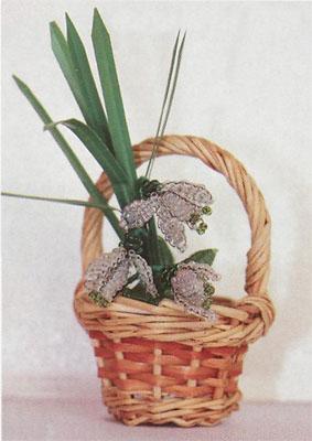 Комнатные растения на урале вриезия